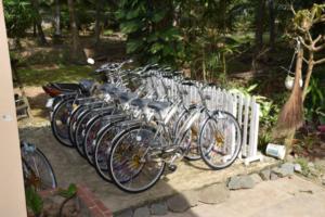 Arrivee Tan Thoi (3)