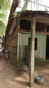 URGENCE - Parrainage NGUYEN QUOC BAO (5)